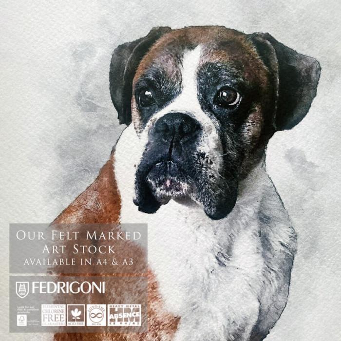 dog portrait fedrigoni paper