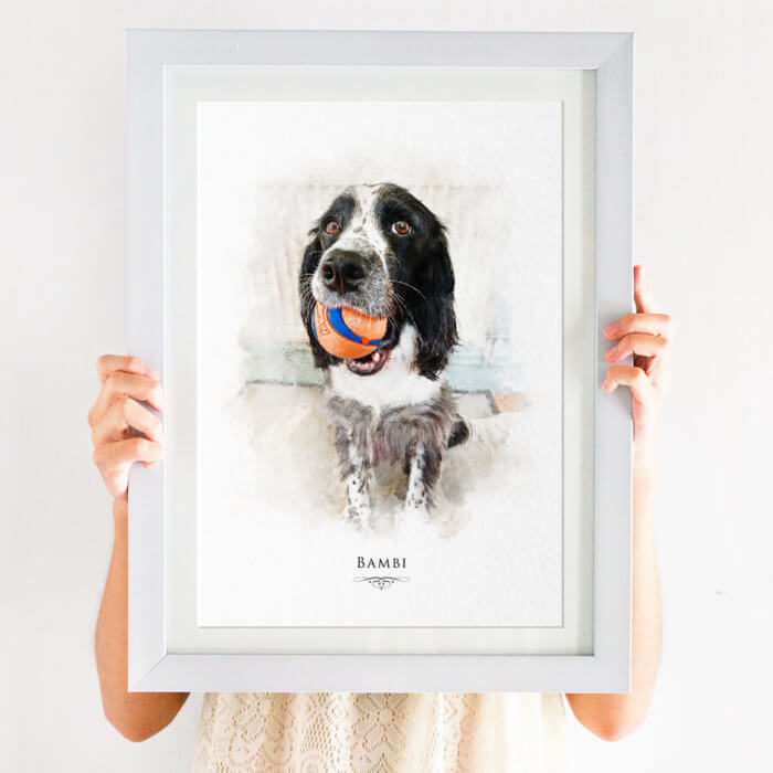 spaniel pet portrait print