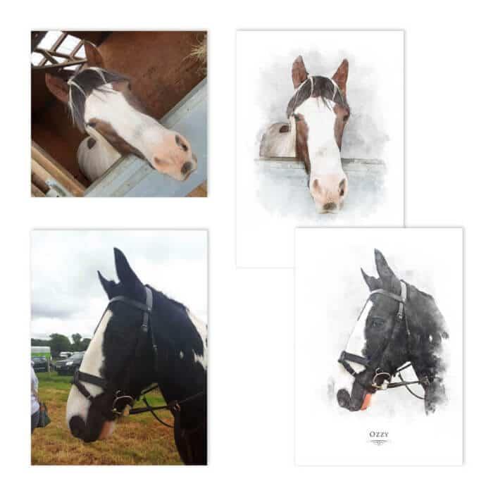 Horse portrait Examples