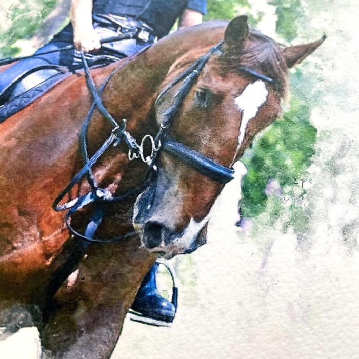 horse portraiture illustration print