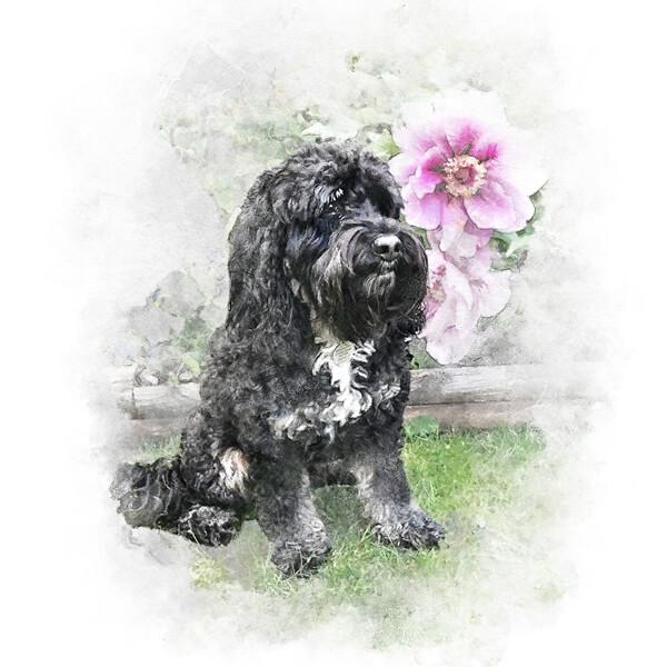 pet portraits background options